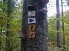 Goldsteig_05_10-1080427