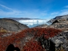 Ilulissat-1030434.jpg
