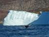 Ilulissat-1030484.jpg