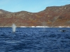 Ilulissat-1030494.jpg