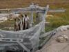 Ilulissat-2202.jpg