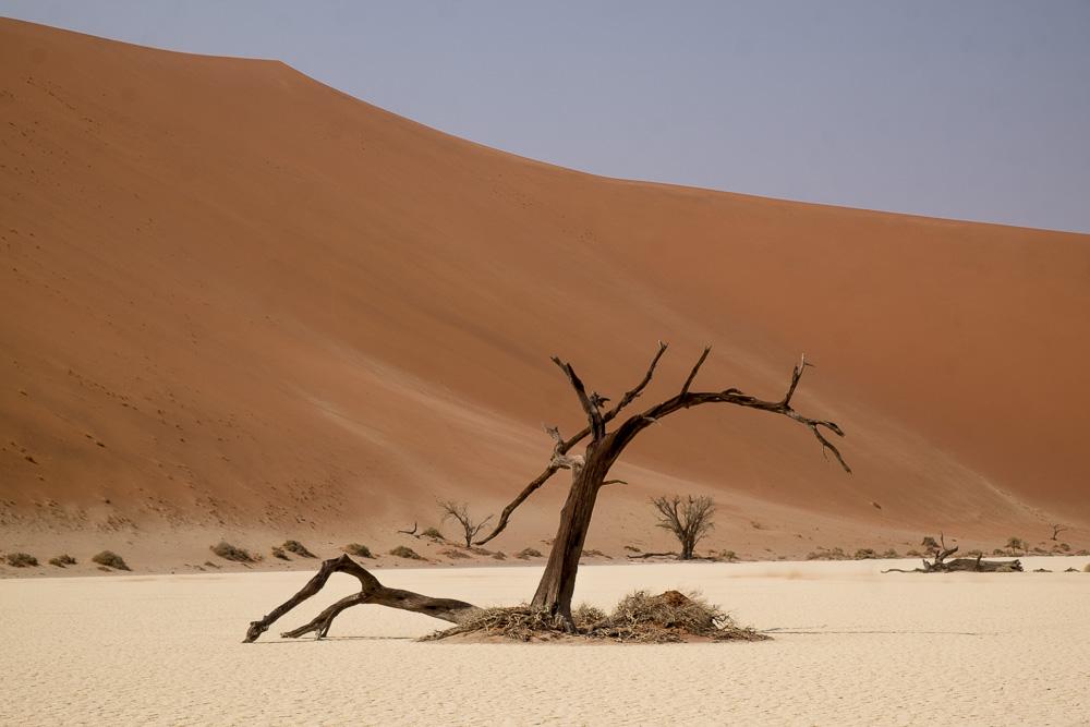 Namibia-83