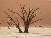 Namibia-76