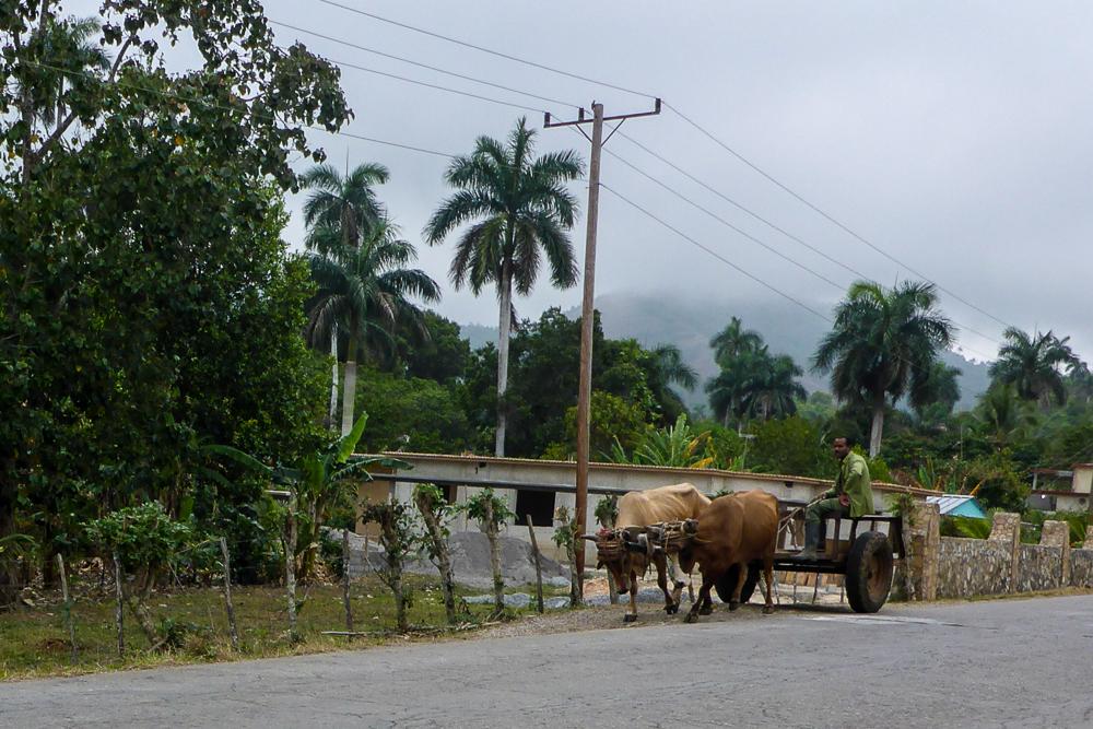 Cuba_Lumix-1000141